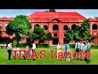 UVAS Admission | Fee Structure | Merit List Check Online